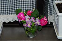 Flower1_3
