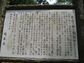 Mikaerizaka