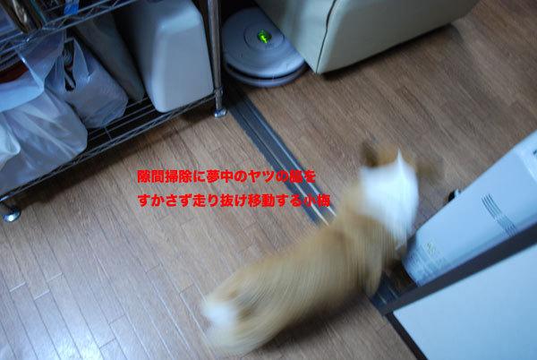 Roomba_3_2