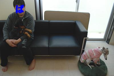 Azuki_chloe_111211_2