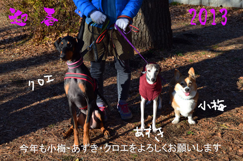 2013akeokekotoyoro_2