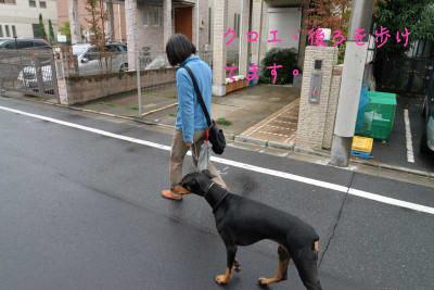 Walkingafterme