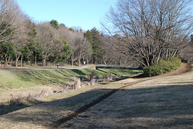 Nogawa_park_2